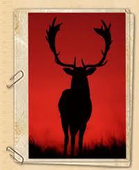 vadászat4.jpg