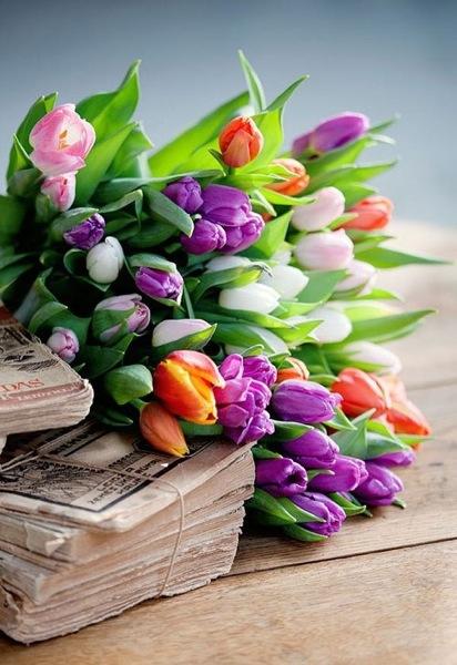 tulipánok.jpg