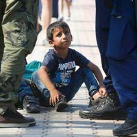 Menekült, migráns, vagy terrorista?