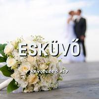 Hangolódó #59 | Esküvő