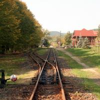 Húsz kép Magyarország legrégebbi erdei kisvasútjáról