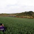 Nosztalgiavonat a bezárt vasúton – NKPK 83.