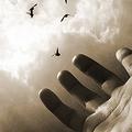 Veszteségeink feldolgozásának fontossága és a túlzott pozitivizmus veszélyei