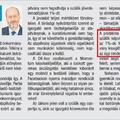 A Fidesz frakcióvezetője szabálytalanságra buzdított, az MKKP jelöltje cselekedett