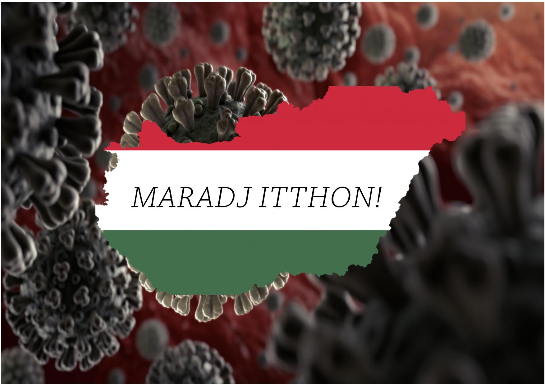 maraditthon.jpg