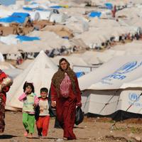 Mágnesként vonzza a svéd város a szíreket