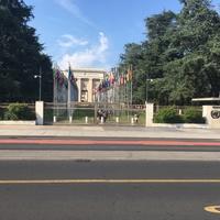 A tökéletes város: Genf