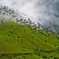 TOP10 Dél-Amerika - Természeti csodák