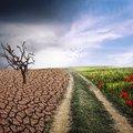 Központi téma a klímaváltozás is!