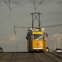 Állítsuk meg az üresen közlekedő villamosokat!