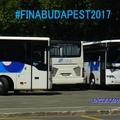 FINA 2017