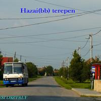 Hazai(bb) terepen
