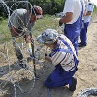 A határzár építése nem vezet vissza a munka világába!