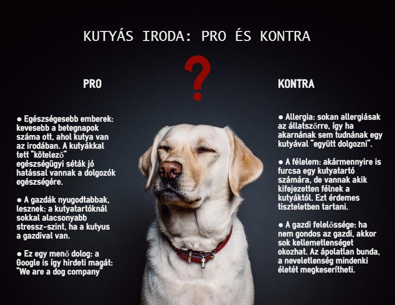 dogoffice.jpg