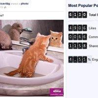 TOP3 magyar Facebook-bejegyzés 2013. júliusában