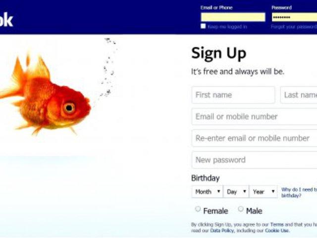 Egy aranyhalnak is jobb a memóriája, mint a Facebook-felhasználóknak