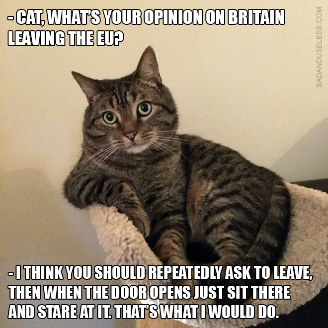 brexit-memes1.jpg