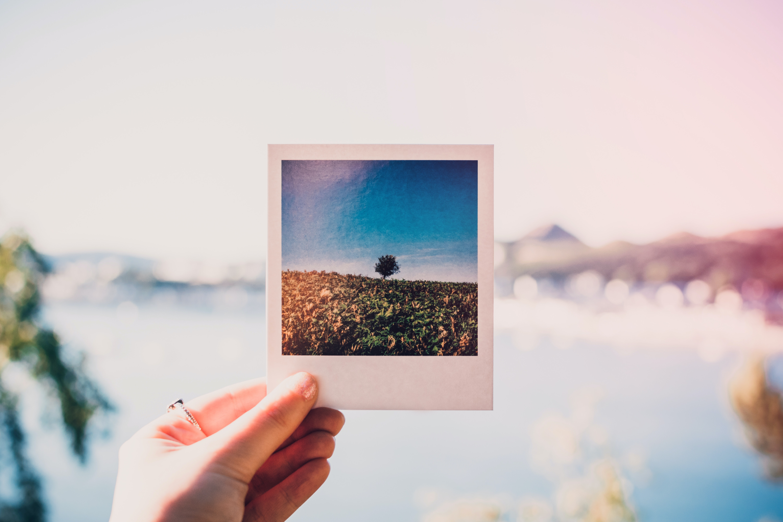 pexels-lisa-fotios-1252983.jpg