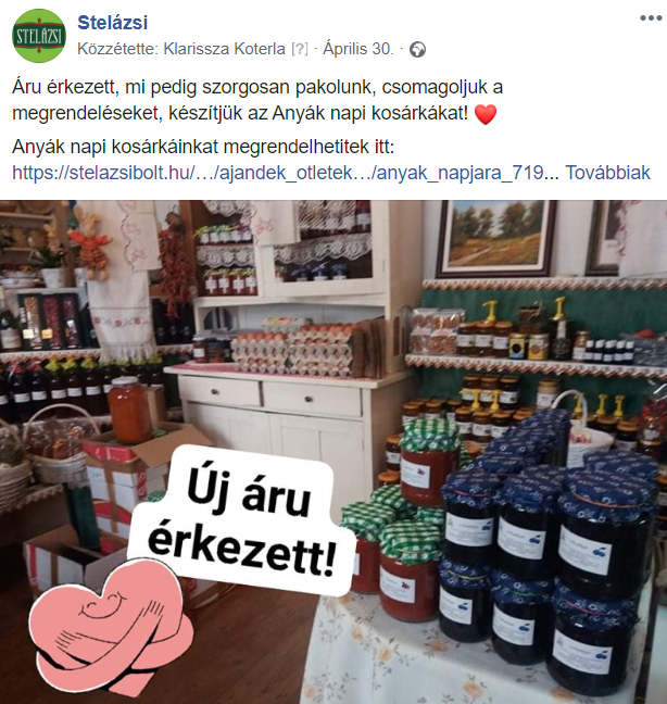 stela_zsi.png