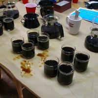 Kávé-függőség
