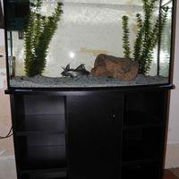 Akvárium-bútor 100,120 l-es akváriummal