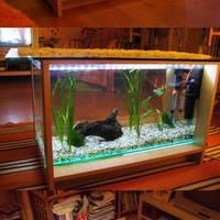 90 literes akvárium-dohányzóasztal fehér leddel