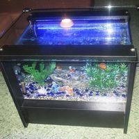 54 literes akvárium dohányzóasztal kék leddel