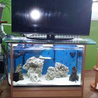 TV állvány akvárium asztal íves akváriummal
