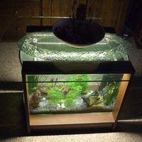 Íves akvárium dohányzóasztal, 70 literes