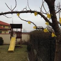 5 perces tavaszi dekoráció 300 Ft-ból balkonra, kertbe
