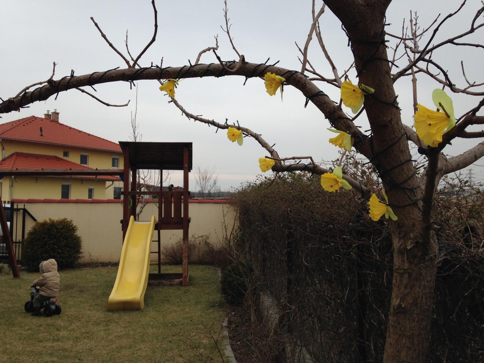 2015-03-02_13_57_31.jpg