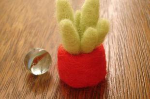 Nemezelt kaktusz
