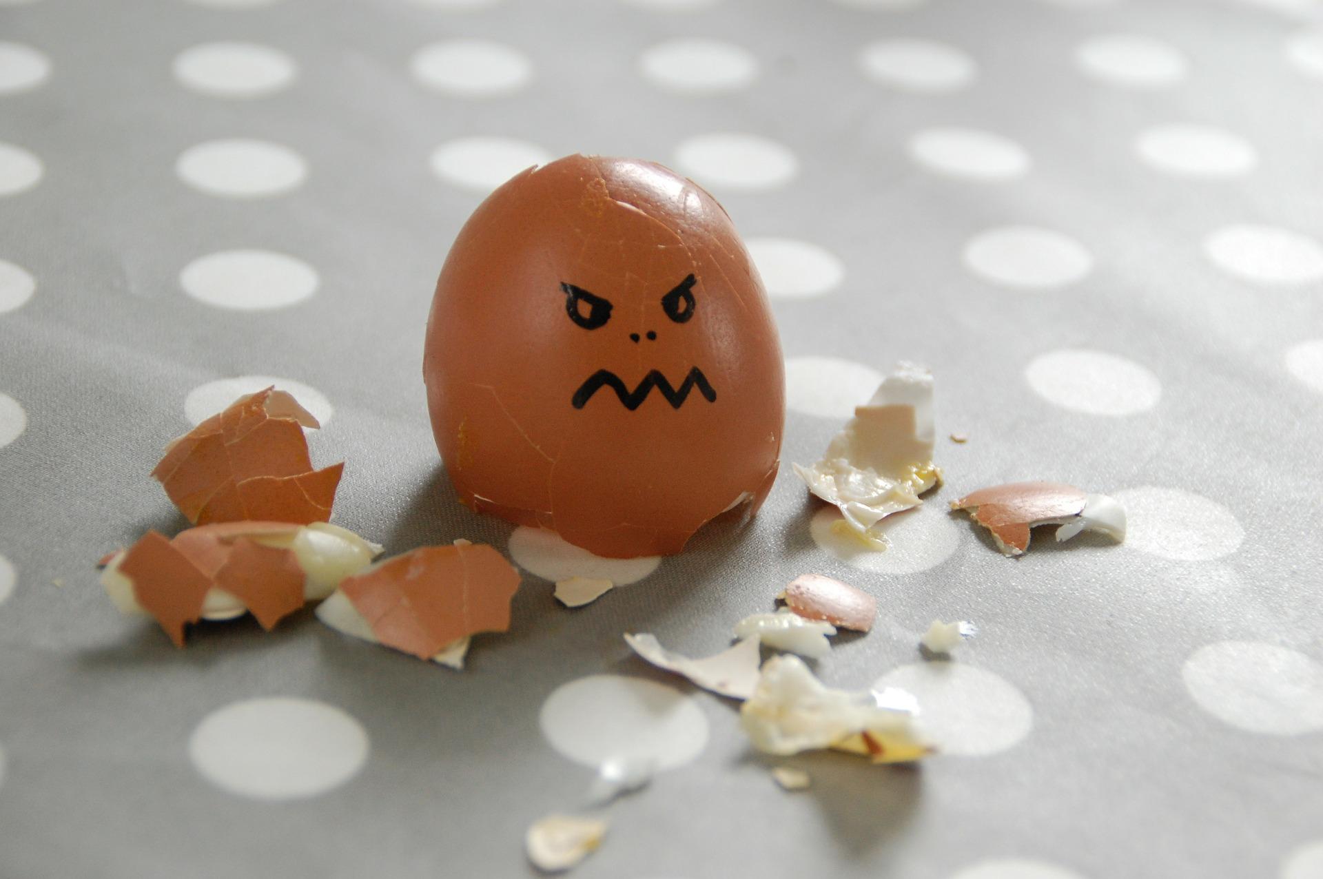 egg-100808_1920.jpg