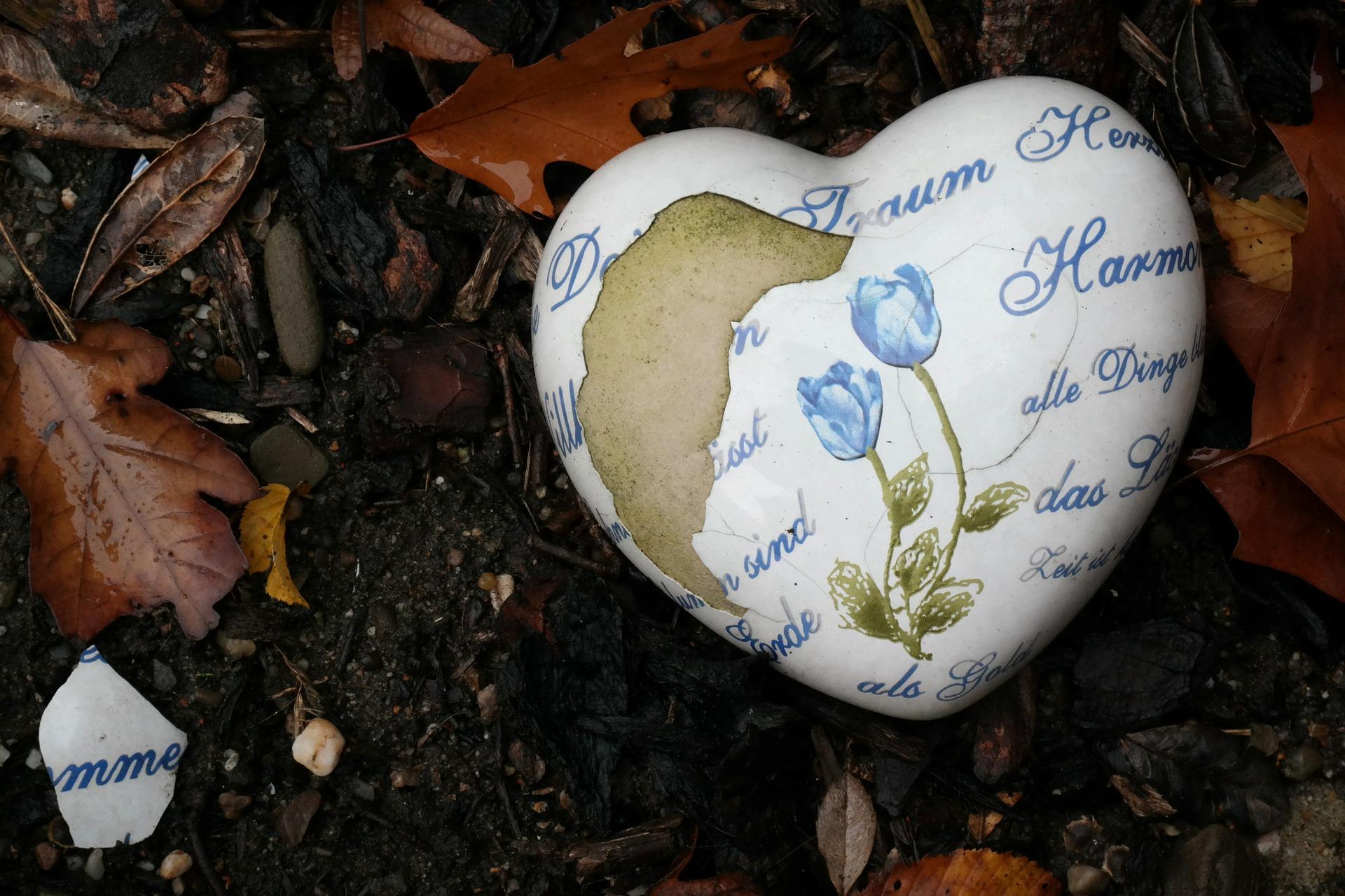 heart-480367_1920.jpg