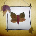 Pillangó falevélből