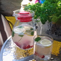 4+1 nyári frissítő ital