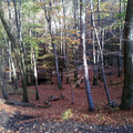 15 őszi kiránduló úti cél