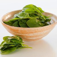 Receptek a tavasz első leveleivel - Ötletek spenótra, sóskára