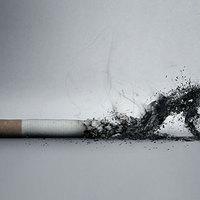 Nemzeti Együttdohányzás Rendszere