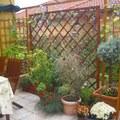 Esős vasárnap...