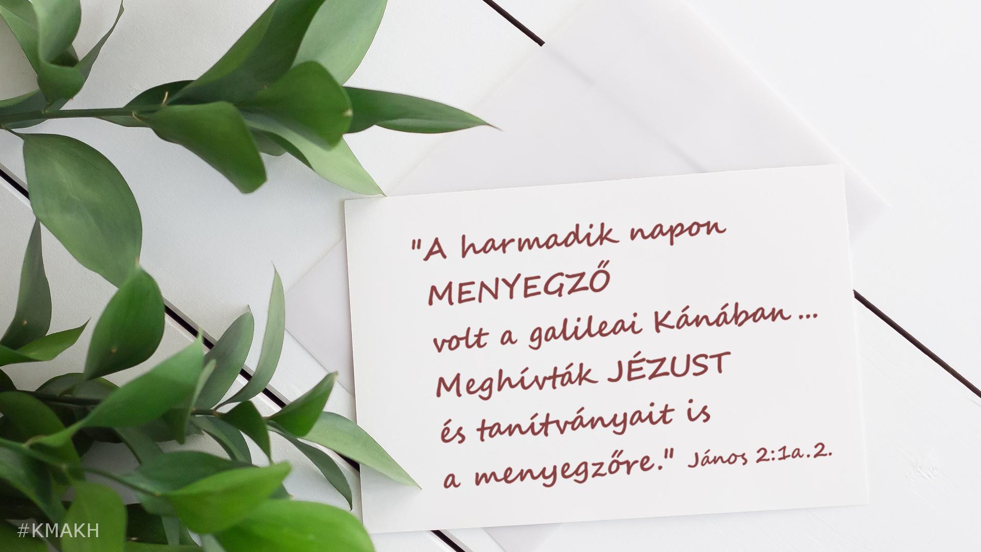blog_2018_08_17_cs01-02_pb_vizbol_bor_a_menyegzo.png