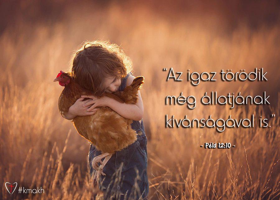 blog_2019_09_10_mo43_kk_lesznek-e_allatok_az_uj_foldon.png