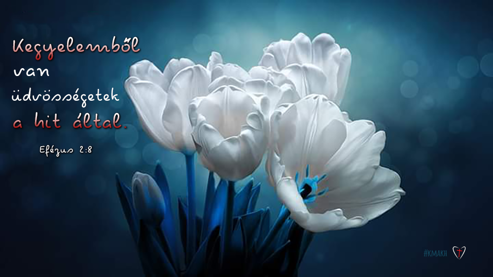 blog_2020_06_26_adrianr_dm_a_kegyelem_megtart.png