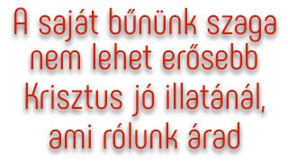 bunszag.png