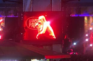 Élménybeszámoló: Iggy Pop koncert, Budapest Park