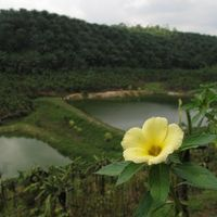Kalandok Srí Lankán I