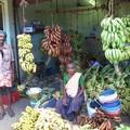 Fejlemények Dél-Indiából