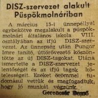 233. DISZ-szervezet alakult Püspökmolnáriban
