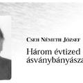1074. Cseh Németh József visszaemlékezése