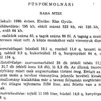 756. A községi termelőszövetkezetek 1960-ban
